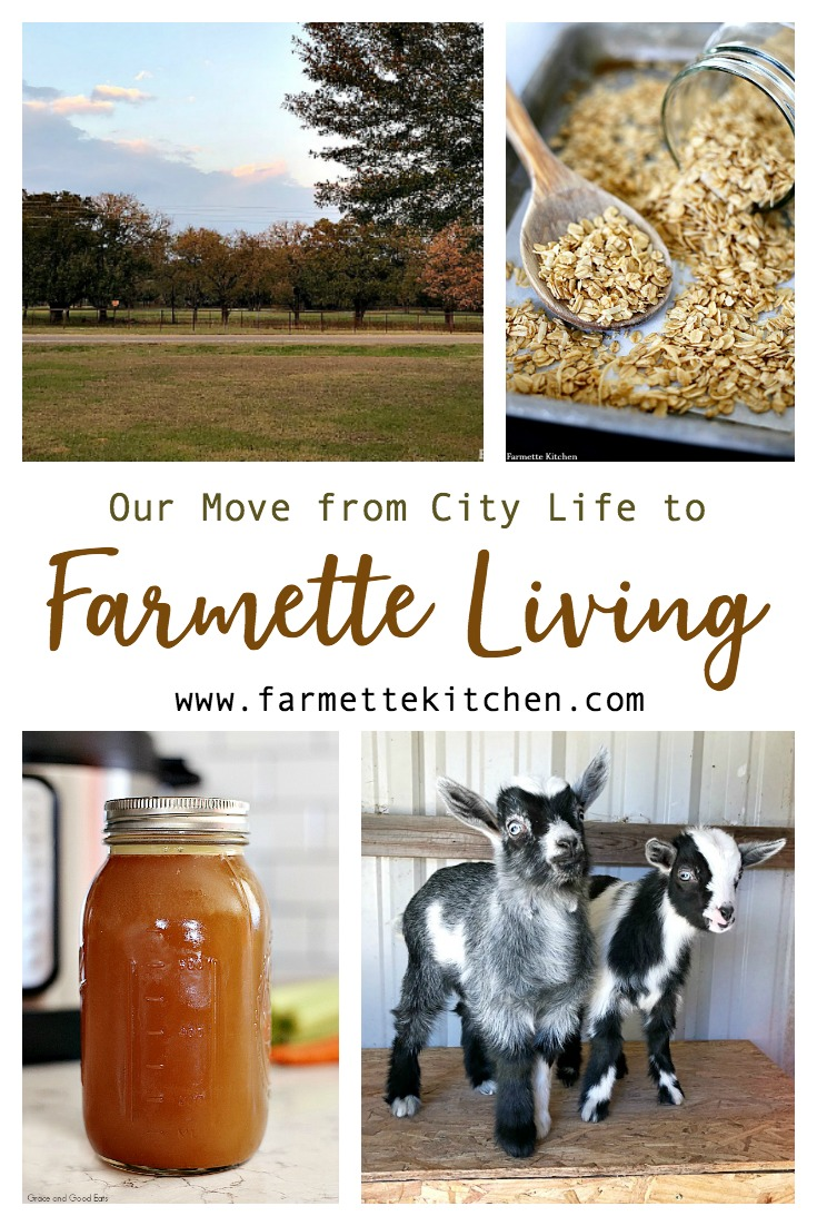 What is a farmette? For me, it is a small farm- a few acres of fresh air with a functional garden and a couple of chickens running around. Our farmette is where we have learned to revert back to a simpler way of doing things.