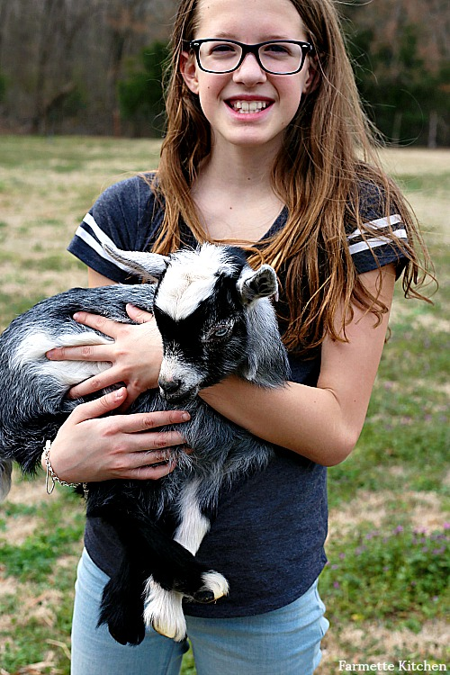 child holding a baby goat