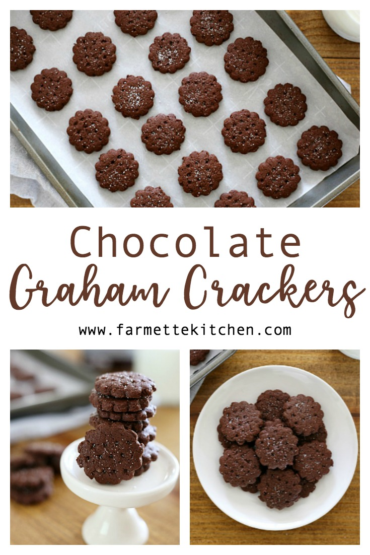 Make your own Homemade Chocolate Graham Crackers with only a few simple ingredients. Perfect in the lunchbox or as an after-school treat!