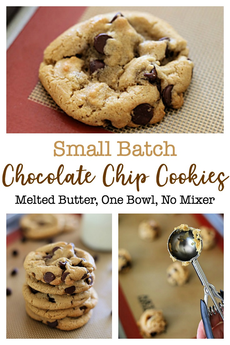 My family loves these one-bowl Small Batch Chocolate Chip Cookies! With this easy chocolate chip cookie recipe there's no need to get out the mixer, soften the butter, or chill the dough.