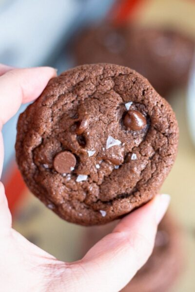 fingers holding chocolate cookie